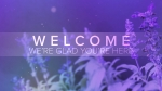 Salvia: Welcome